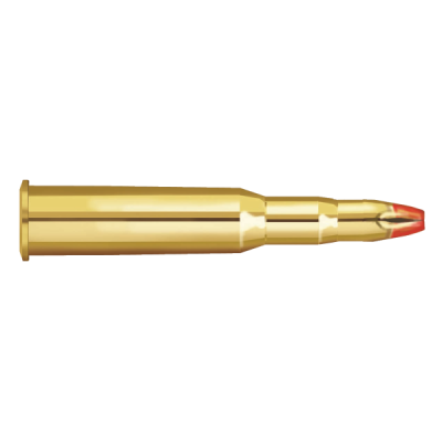 Blank cartridge 30-06 Prvi